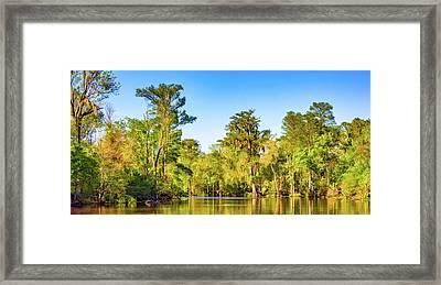 Louisiana Bayou 5 - Paint Framed Print by Steve Harrington