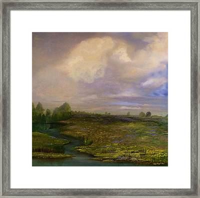 Louisiana Countryside Framed Print
