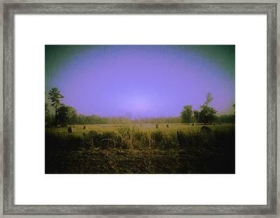 Louisiana Pastoria Framed Print