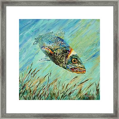 Louisiana Speckled Framed Print