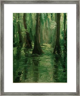 Louisiana Swamp Framed Print