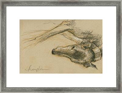 Lounging Greyhound Framed Print by Tracie Thompson