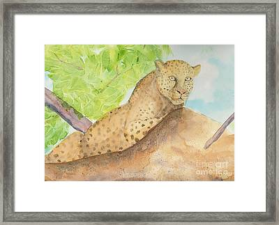 Framed Print featuring the painting Lounging Leopard by Vicki  Housel