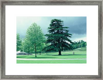 Lourdes Framed Print by Richard Barone