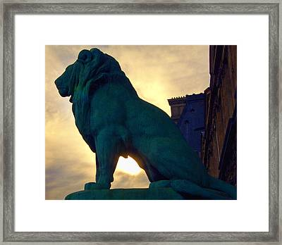 Louve Lion Framed Print