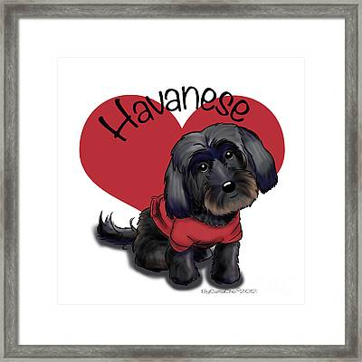 Lovable Black Havanese Framed Print by Catia Cho