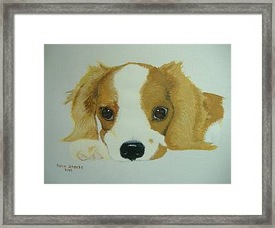 Framed Print featuring the painting Lovable Puppy by Norm Starks