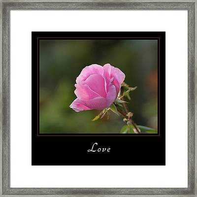 Framed Print featuring the photograph Love 2 by Mary Jo Allen
