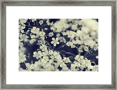 Love And Lace Framed Print