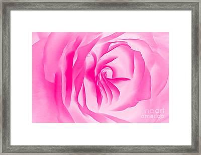 Love Blush Framed Print