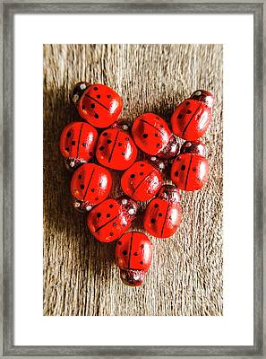 Love Bug Framed Print by Jorgo Photography - Wall Art Gallery