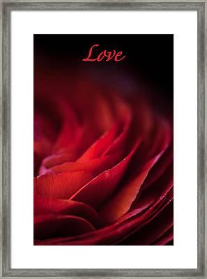 Love Framed Print by Elena E Giorgi