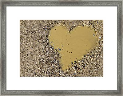 Love In A Muddy Puddle Framed Print by Meirion Matthias