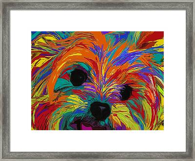Love In Color Framed Print