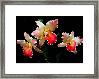 Love In Flowers Framed Print