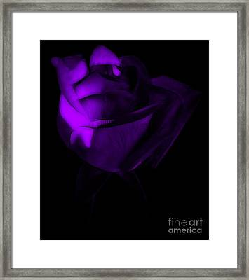 Love In The Dark Framed Print by Krissy Katsimbras