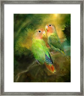 Love In The Golden Mist Framed Print