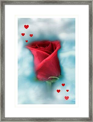 Love Is In The Air Framed Print by Linda Sannuti