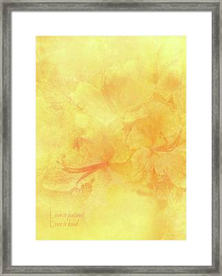 Love Is Patient Love Is Kind Framed Print by Catherine Alfidi