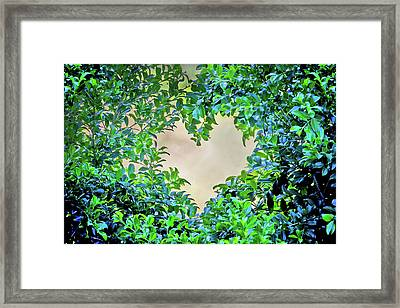 Love Leaves Framed Print by Az Jackson