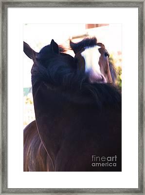 Love Framed Print by Linda Shafer