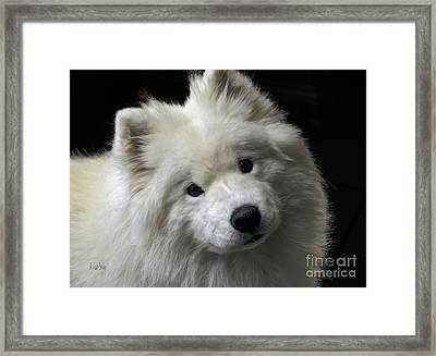 Framed Print featuring the photograph Love by Lois Bryan