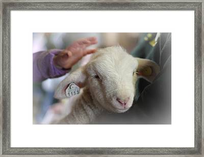 Love Me Tender Framed Print