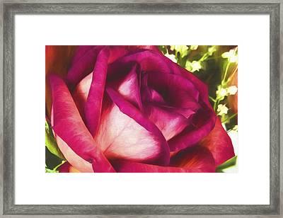 Love Of Mine IIi Framed Print