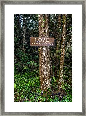 Love On A Tree Framed Print