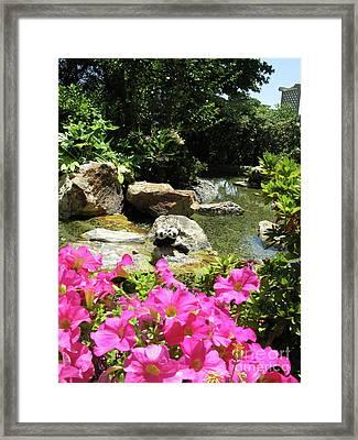 Love On The Rocks- Los Angeles- Pandas Framed Print by Ausra Huntington nee Paulauskaite