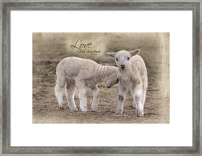 Framed Print featuring the photograph Love One Another by Robin-Lee Vieira