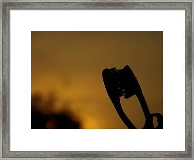 Love Framed Print by Ram Prasad