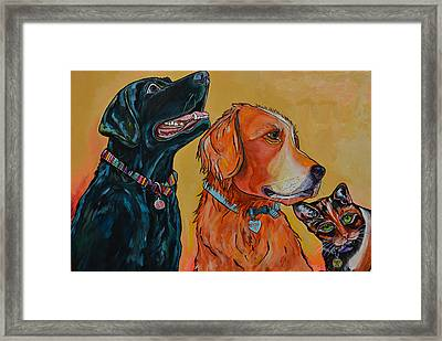 Framed Print featuring the painting Love Rescue Spay by Patti Schermerhorn