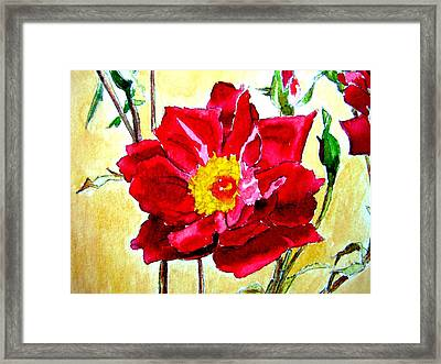 Framed Print featuring the painting Love Rose by Ana Maria Edulescu
