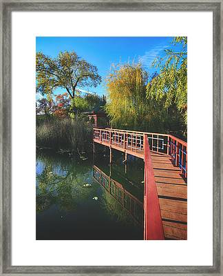 Love Set Me Free Framed Print by Laurie Search