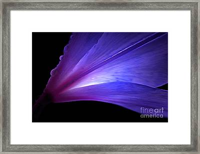 Love Shines Framed Print by Krissy Katsimbras