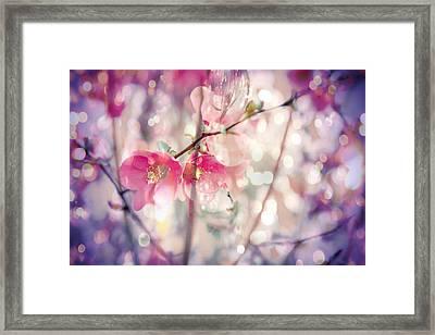 Love Song Framed Print by Toni Hopper
