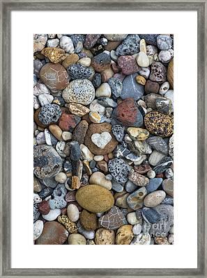 Love The Beach Framed Print