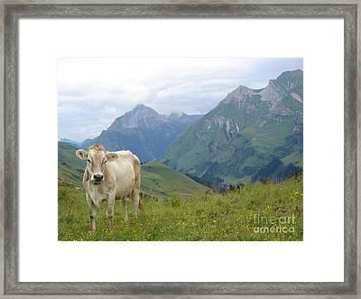 Love You Too Framed Print by Jan Daniels