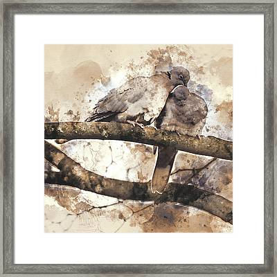Lovebirds Framed Print by Art By Jeronimo