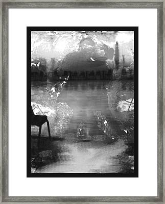 Lovedance Framed Print by Paul Sutcliffe