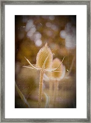 Loveletter Framed Print