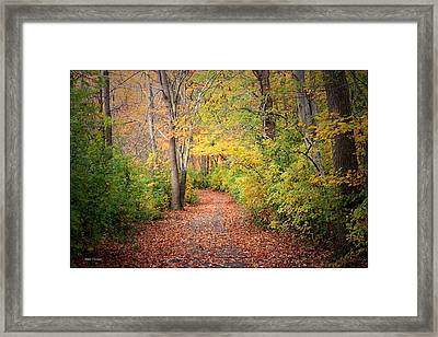Lovely Autumn Framed Print by Mikki Cucuzzo