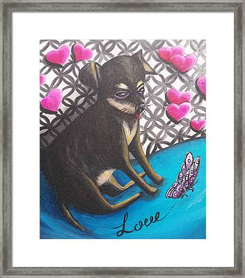 Lovely Chihuahua Puppy  Framed Print by Beryllium Canvas