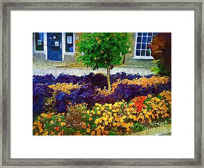 Lovely Colors Framed Print by Deborah Selib-Haig DMacq