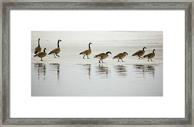 Lovely Day For A Stroll Framed Print