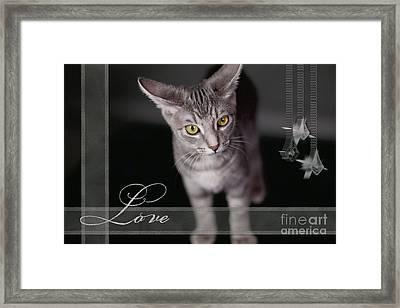 Lovely Face Card Framed Print