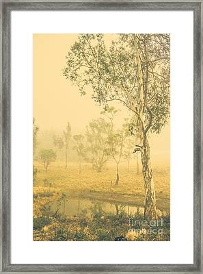 Lovely Foggy Woodland Framed Print by Jorgo Photography - Wall Art Gallery