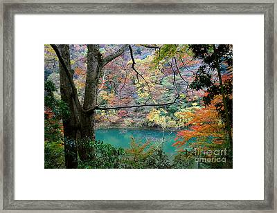 Lovely Landscape By Tim Wilson Framed Print