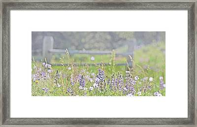 Framed Print featuring the photograph Lovely Montana Wildflowers by Jennie Marie Schell